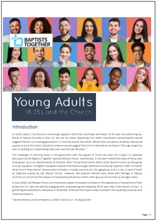 BT Young adults report1